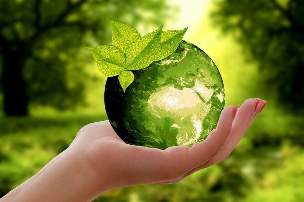 green-world-hypothesis